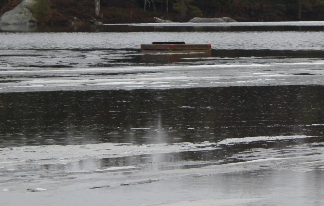 Dock spring 2014